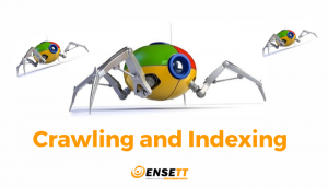 Crawling and Indexing- SEO company in patna